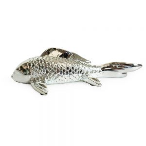 Medium Fish
